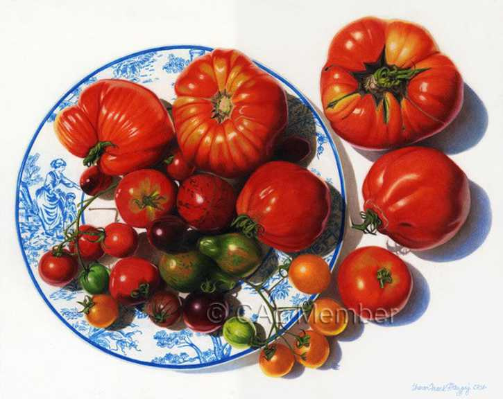 mazgaj heirloom tomatoes 2 w